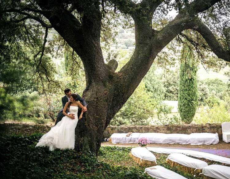 Encina tricentenaria Un árbol catalogado por su historia y su belleza. Bajo su sombra se celebran eventos en un marco rústico incomparable